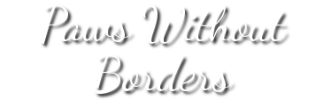 Paws Without Borders